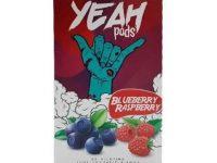 Yeah Pods | Blueberry Raspberry