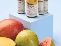 Dream Collab   Guava Mango ICE Salt 30ml