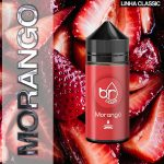 Br Liquid | Morango 30ml/100ml