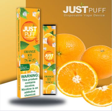 Just Puff Pod Descartável (10 sabores)-5072