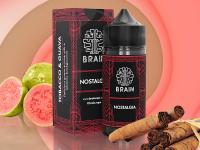 Brain Nostalgia Salt | Tabaco e Goiaba 15ml/30ml