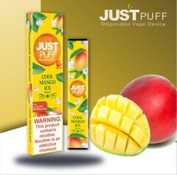 Just Puff Pod Descartável (10 sabores)-5074