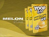 Yoop Bar Refil – Melon Ice