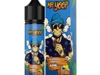 Mr Yoop | Blueberry Lemon Ice 60ml